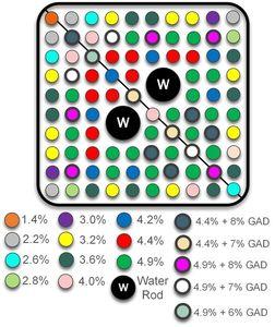 Typische Anordnung von Brenn- und Steuerelementen (Grafik: Majdi Radaideh, MIT)